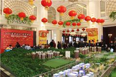 2月20日蓝光•香江国际二期元宵喜乐会欢快来袭